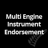 Multi Engine Instrument Endorsement