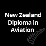 NZ Diploma in Aviation